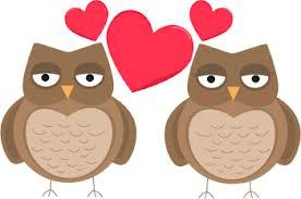 Owls and hearts - TVS