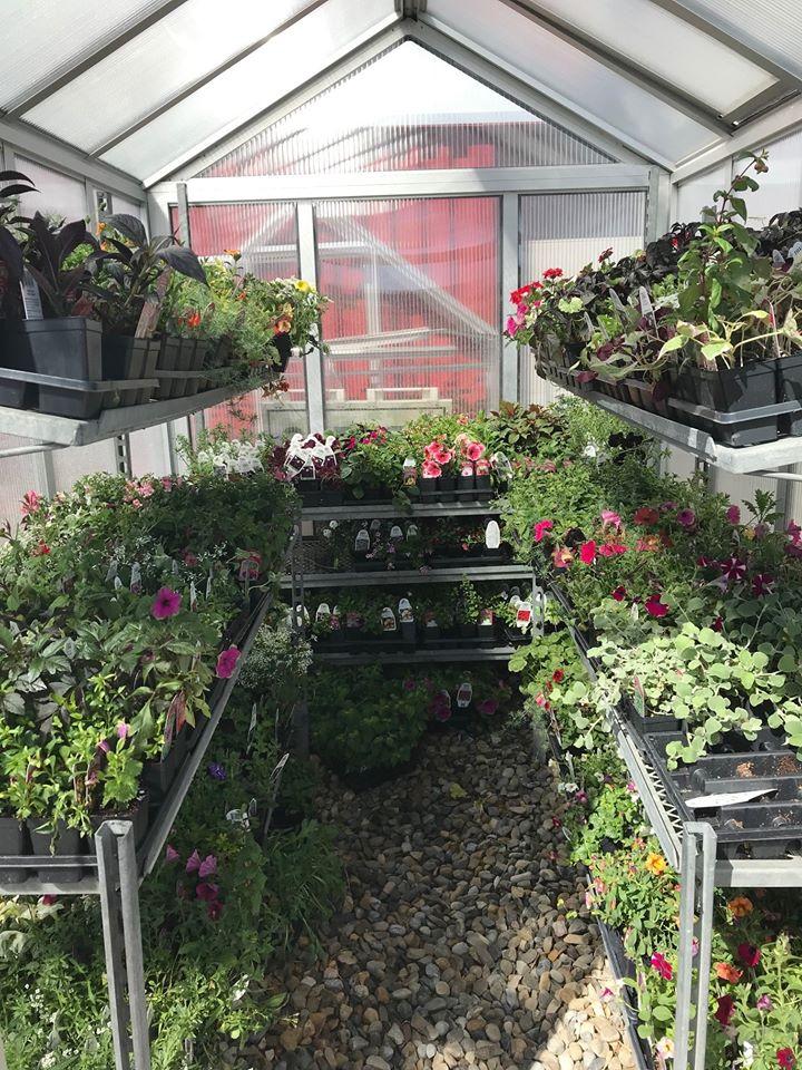 Millarville Horticultural Club: Garden Retreat