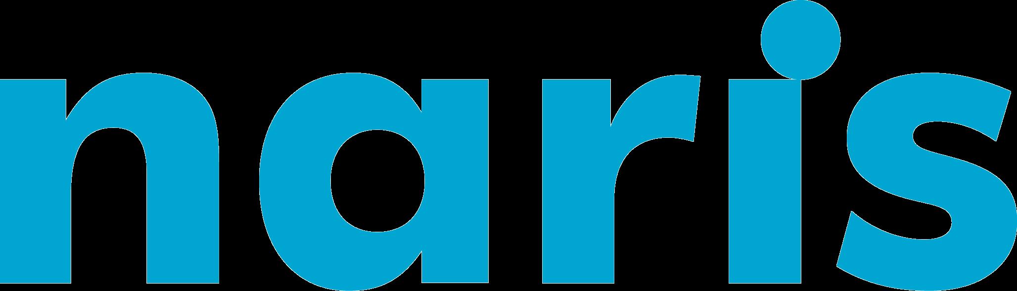 Naris Logo Software, Data & Analytics