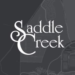 Saddle Creek Gallery
