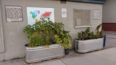 Planters in playground, May Street Elementary, Hood River, OR