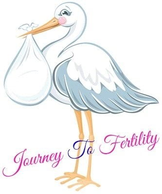 journey to fertility: infertility to fertility