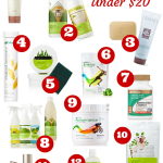 Shaklee Holiday Gift Guide UNDER $20