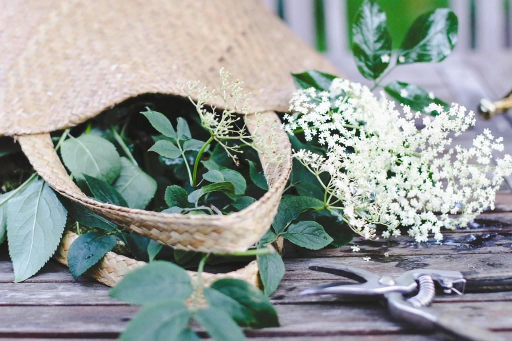 diy easy elderflower wreath.