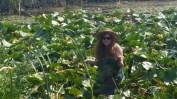 Klamath Tribe- Traditional Plants Program- Harvesting wocas