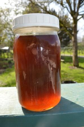 Bigleaf maple syrup!