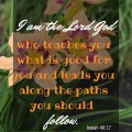 Isaiah 48:17 I am the Lord God who teaches you what is good for you and leads you along the paths you should follow.