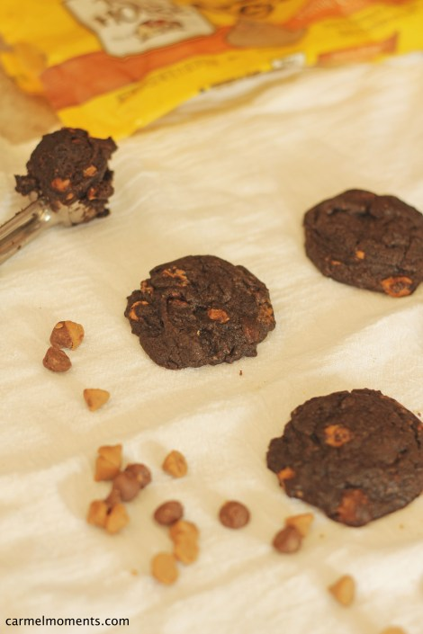 Dark chocolate peanut butter cookies | gatherforbread.com