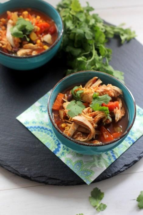 Southwest Chicken Vegetable Soup | Carmel Moments