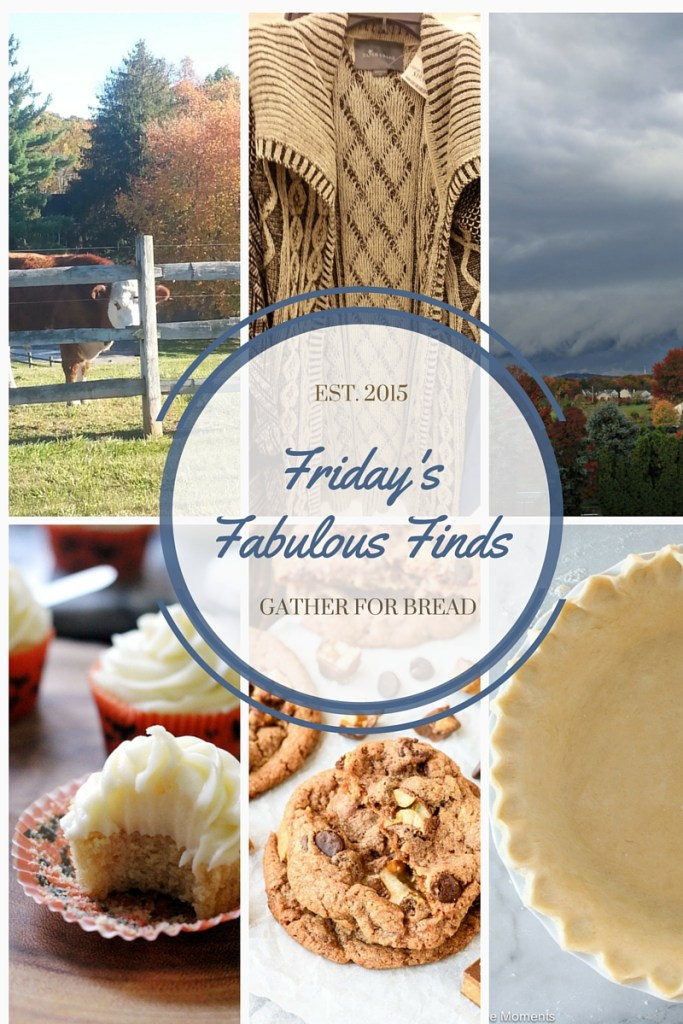 Copy of Friday's Fabulous Finds Week #6