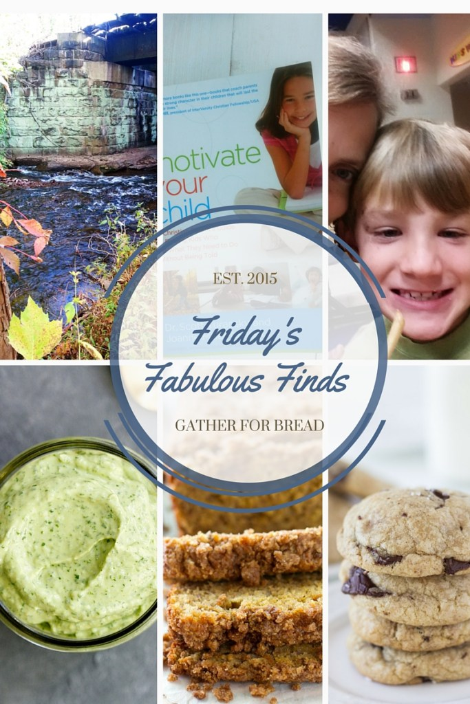 Friday's Fabulous Finds Week #3