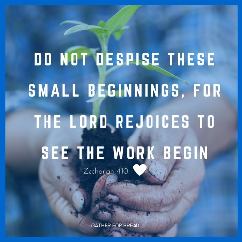 Do not despise these small beginnings Zechariah 4-10 | GATHERFORBREAD.COM