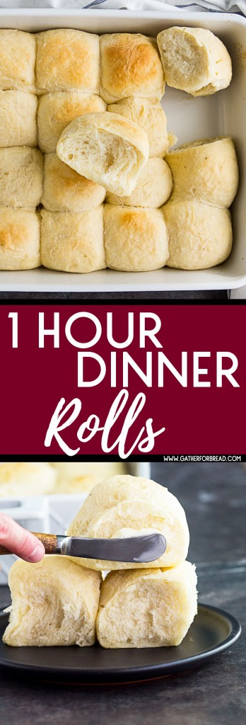 1 Hour Dinner Rolls - Easy homemade soft dinner rolls made in 1 hour. Made from scratch and perfect for the holidays. #rolls #homemade #Thanksgiving #bread #holidays
