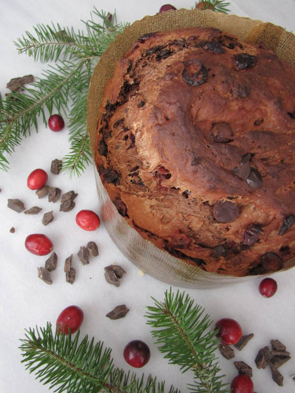 chocolate-panettone-aerial-offset-2