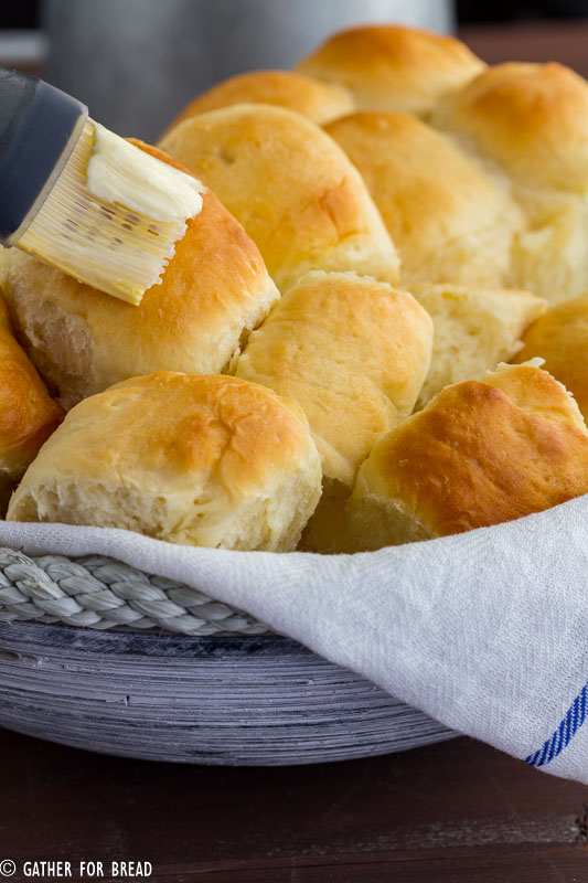 Amish Dinner Rolls - Soft Yeast rolls recipe for warm fluffy buns. Made with instant mashed potato flakes, best served with any dinner comfort food. Adapted from an old Amish cookbook.
