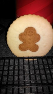 gingerbread cookie atop sugar 1