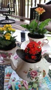 miniflowers4