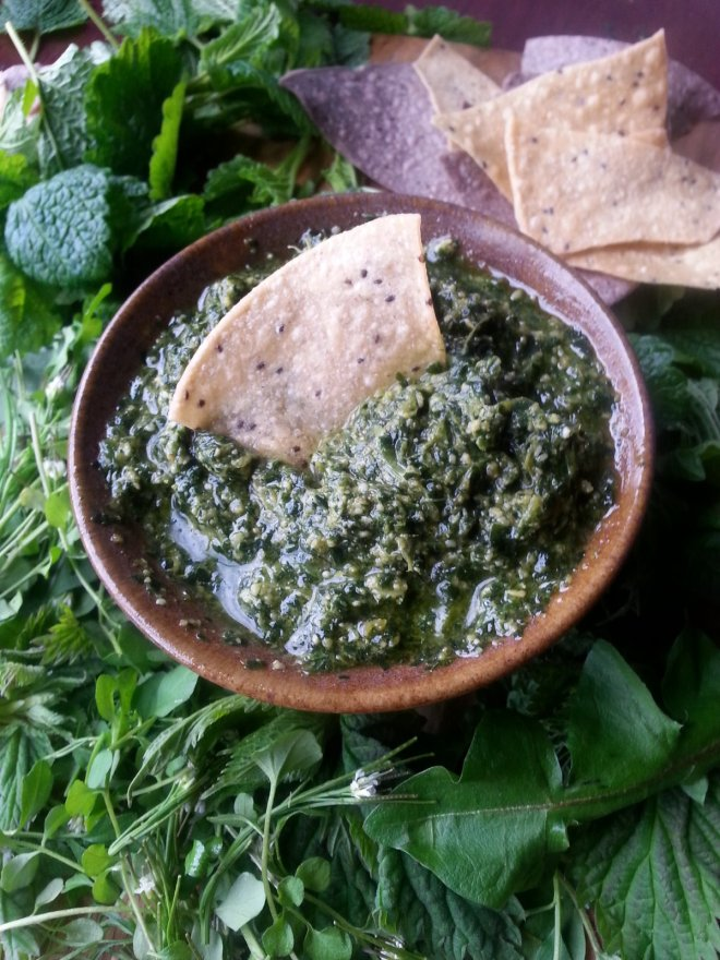 my favourite dandelion pesto