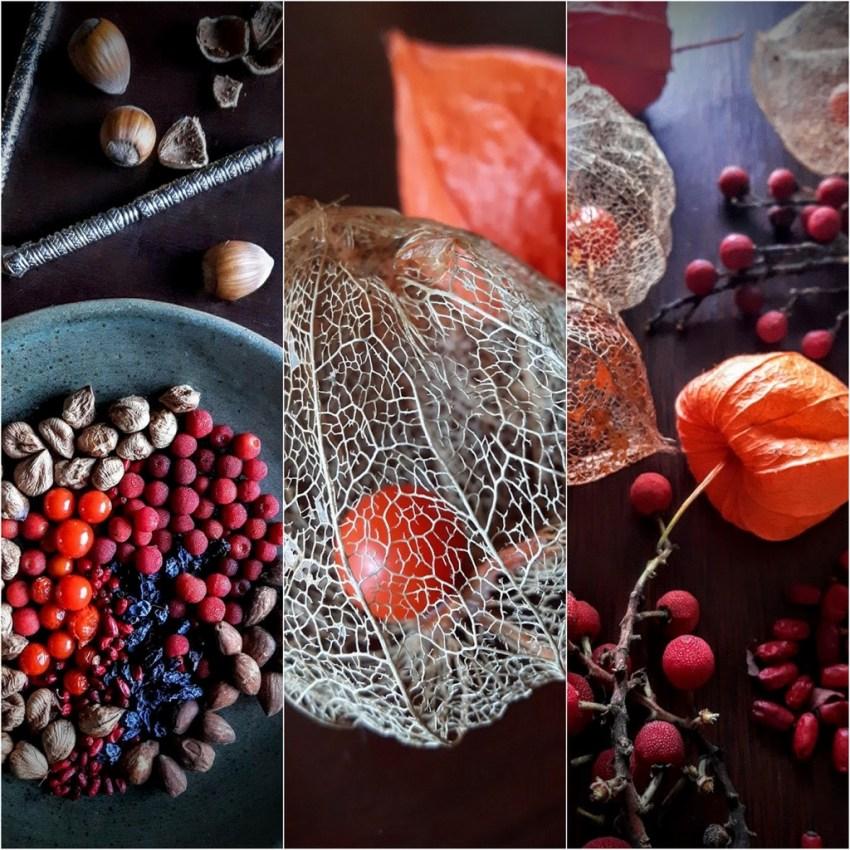 autumn harvest23.jpg