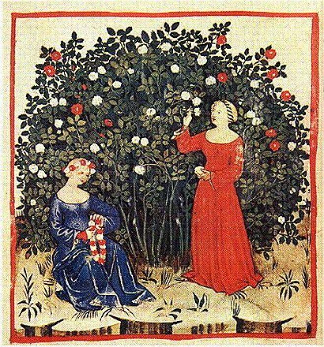 b4efd5f45066df313331ce1158c1ee32--heirloom-roses-rose-cupcake
