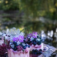 Wild Berry Cakes for Camossung: A Prayer For Restoring The Garden