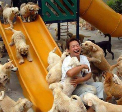 people-doing-amazing-things-for-animals-03162