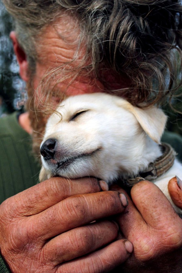 homeless-dogs-and-owners-10