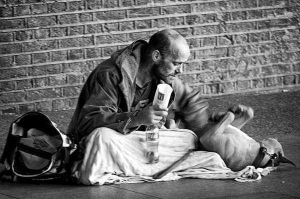 homeless-dogs-and-owners-11