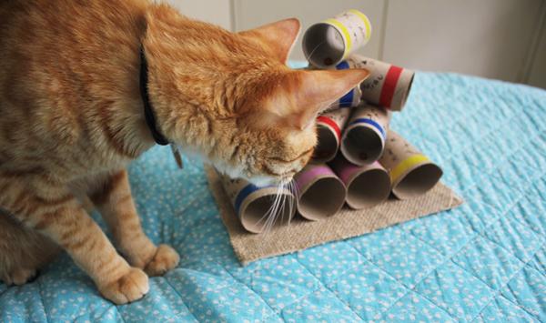 quebra-cabecas-ecologico-gatos-faca-voce-mesmo-8