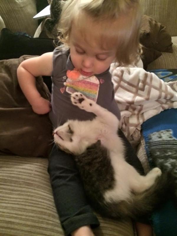 gatinha-tres-patas-adotada-menina-braco-amputado (1)