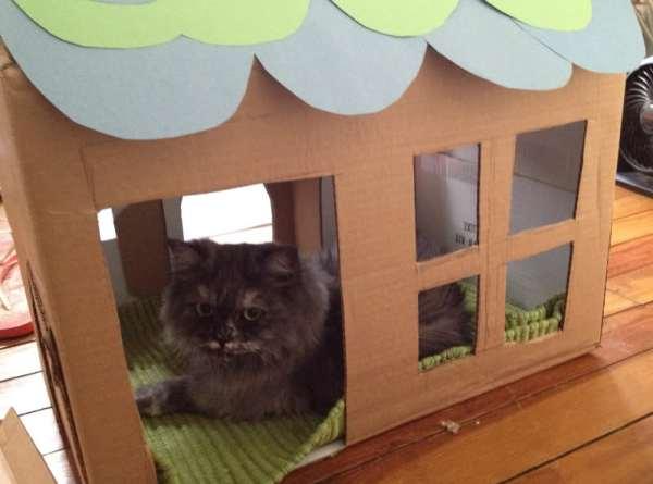 Essa casinha foi postada no Crafster por mouseatethekitty.