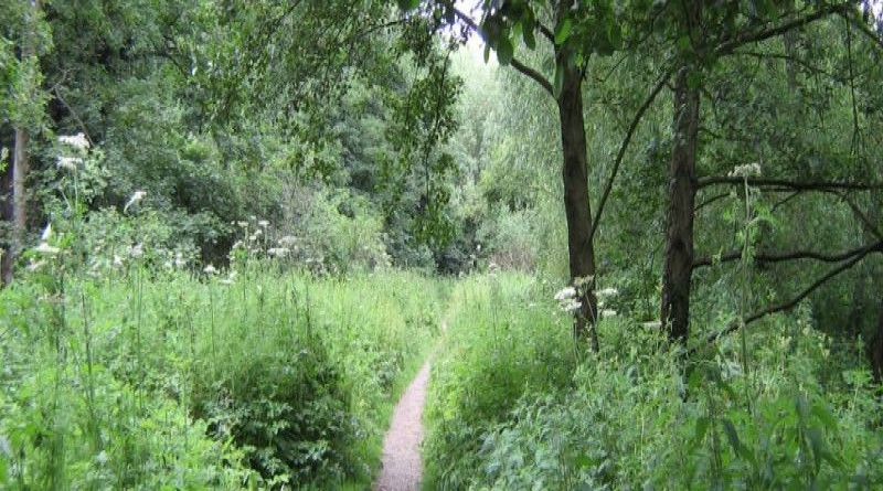 History of Gatley Carr's Nature Reserve