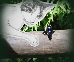 GA_Butterfly