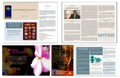 Client: Acopi Nacional - Work: Design the Digital material (Virtual bulletin, posts). - Company: Pisón MyP