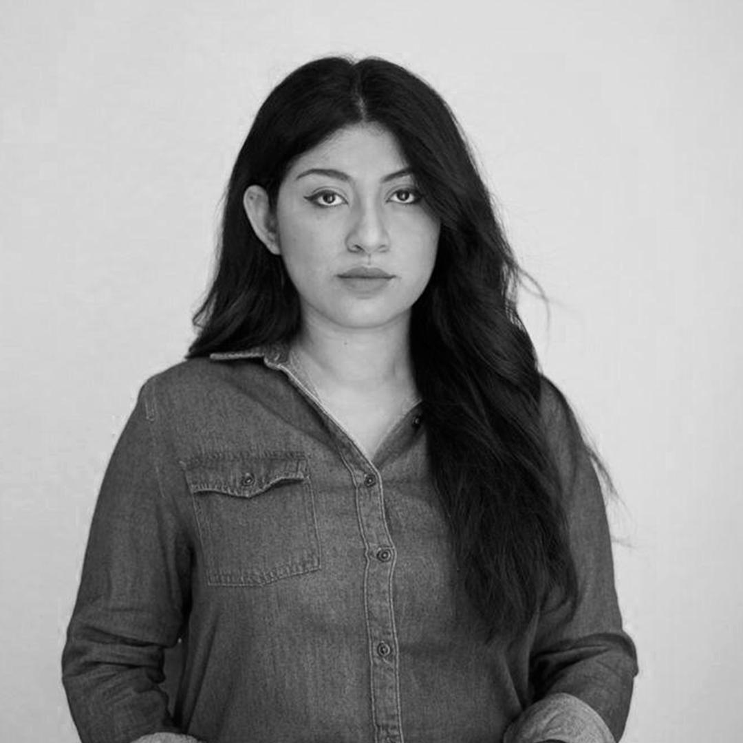 Monica Campos autor