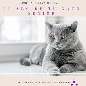 EL ABC DE TU GATO SENIOR
