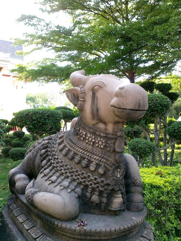 Nandi : The animal of Lord Shiva