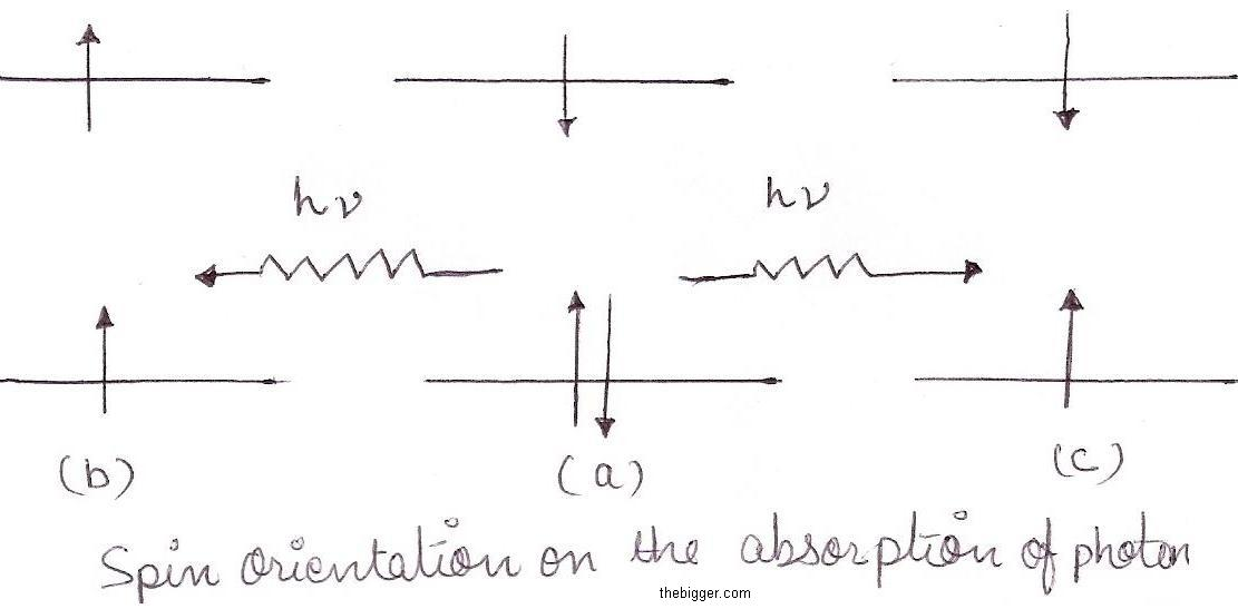 Consequences of light absorption the jablonski diagram ccuart Images