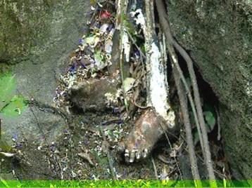 केदार घाटी में बिखरे नर कंकालों में से दिल दहला देने वाला एक दृश्य