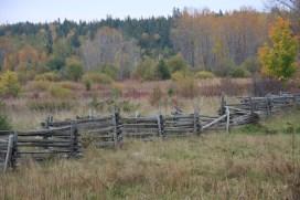 Oct 12 More zig-zag fences