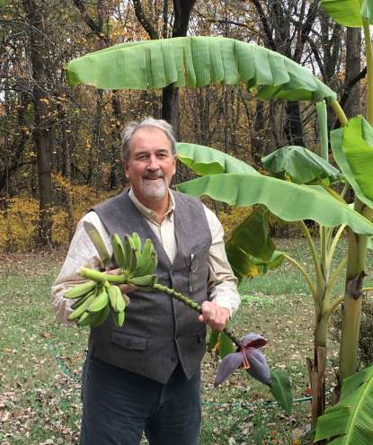 Nov 8 Dan harvesting bananas in Maryland