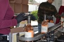 Bottling rosé - 145