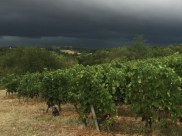 First night of the harvest and a storm comes in.
