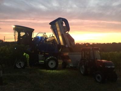 Unloading at dawn