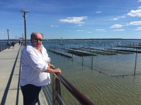 """Rick will love these oyster beds."" Cap Ferret."