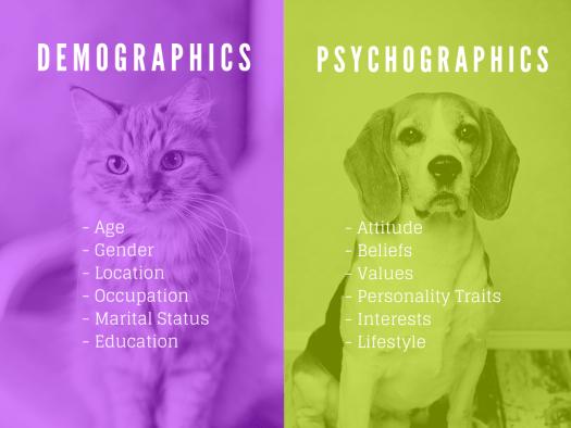 psychographics data