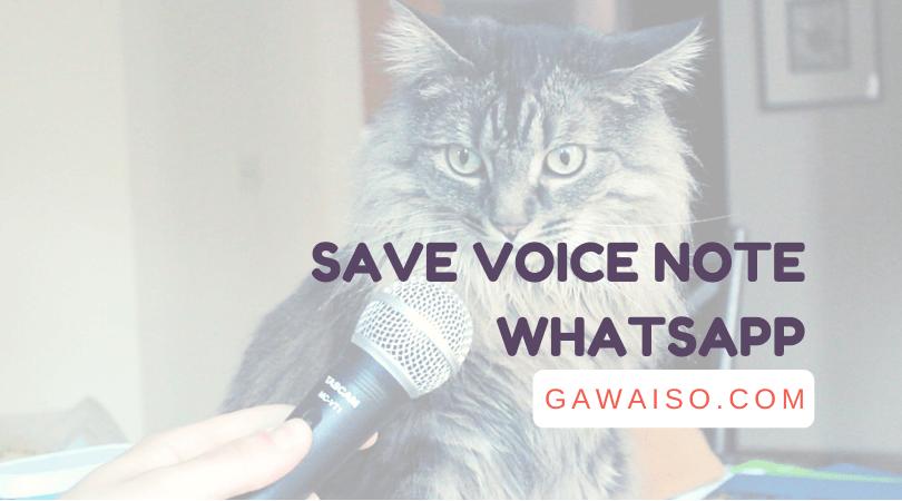cara save voice note whatsapp
