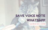 cara save voice note whatsapp