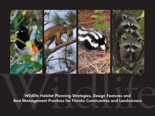 Fish And Wildlife Conservation: Wildlife of Florida