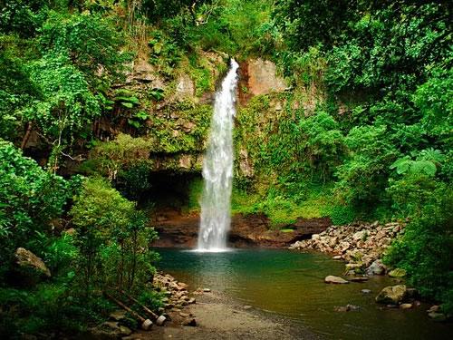 Tropical Vacation Ideas: Fiji